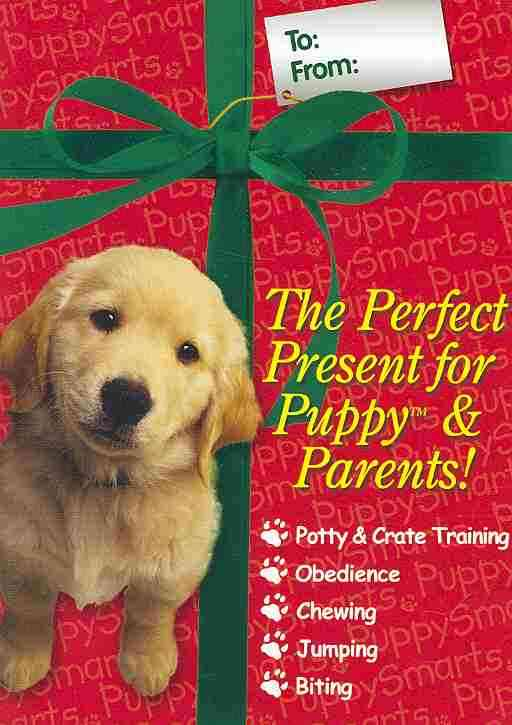 [DVD] Linda White's Puppy Smarts Training Lessons By White, Linda